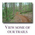 Projects of Trails