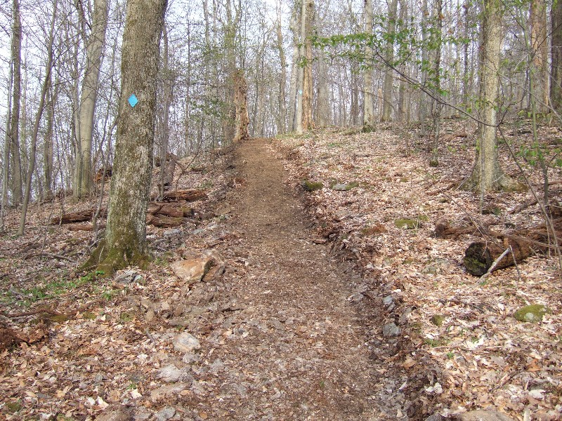 Fork Mountain Trail Reconstruction