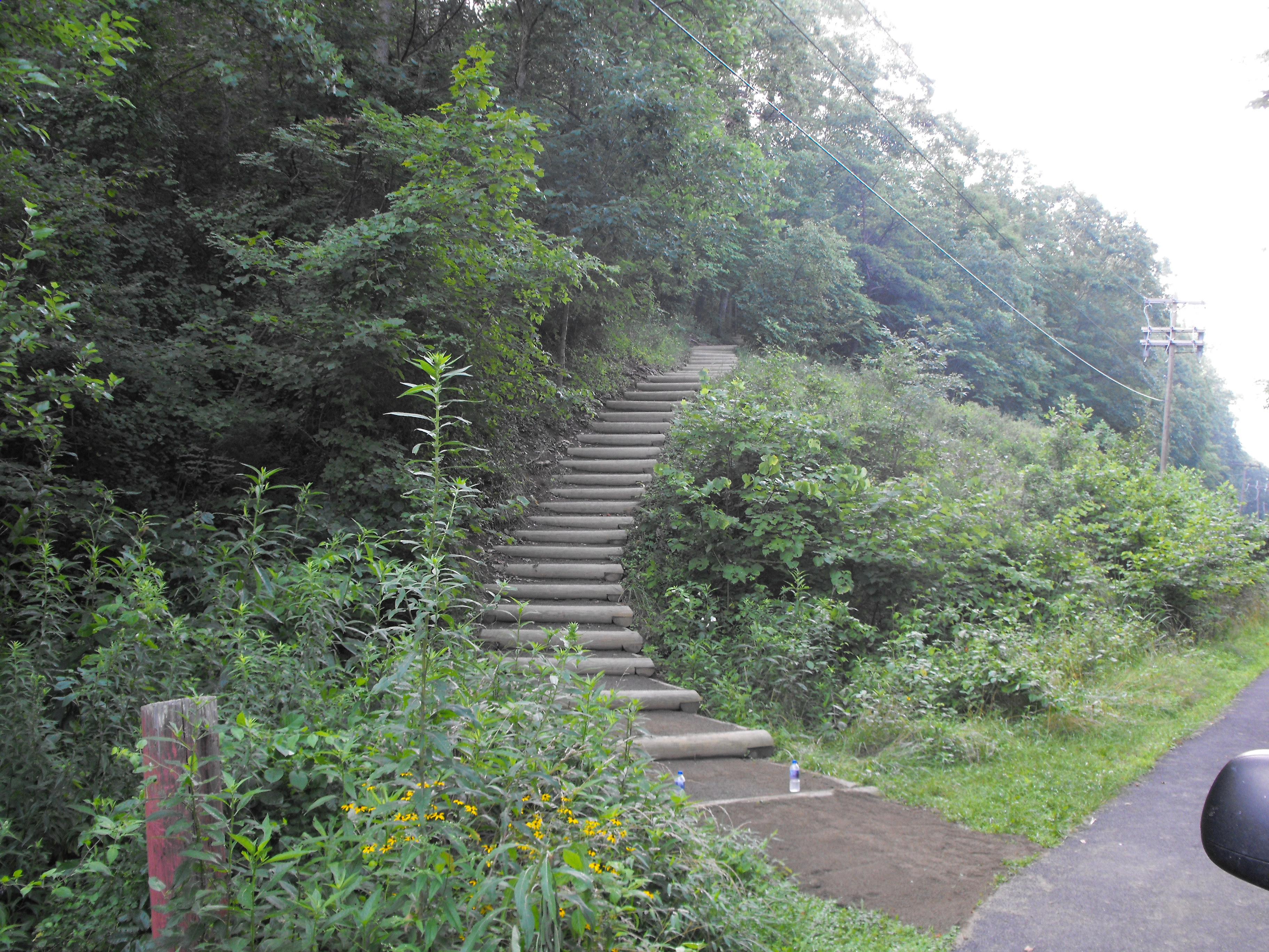 Wildwood Park Trail Steps